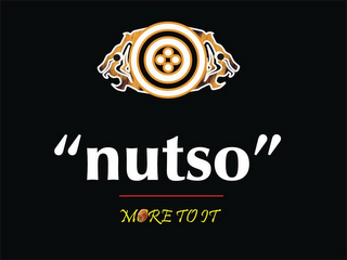 "mark for ""NUTSO"" MORE TO IT, trademark #85420899"