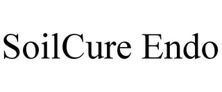 mark for SOILCURE ENDO, trademark #85458052