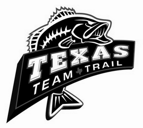 mark for TEXAS TEAM TRAIL, trademark #85478291