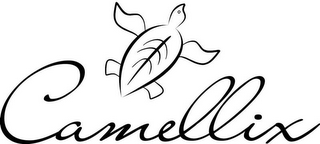 mark for CAMELLIX, trademark #85479836