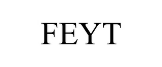 mark for FEYT, trademark #85489413