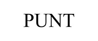 mark for PUNT, trademark #85511056
