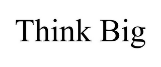 mark for THINK BIG, trademark #85523275