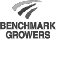 mark for BENCHMARK GROWERS, trademark #85526650