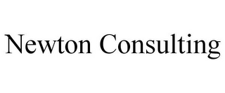 mark for NEWTON CONSULTING, trademark #85528689