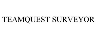 mark for TEAMQUEST SURVEYOR, trademark #85530073