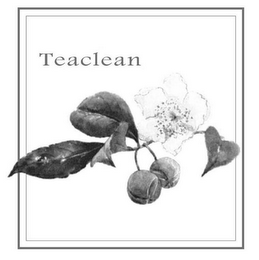 mark for TEACLEAN, trademark #85530474