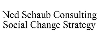 mark for NED SCHAUB CONSULTING SOCIAL CHANGE STRATEGY, trademark #85535358