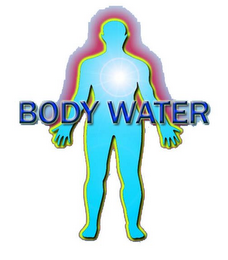 mark for BODY WATER, trademark #85540389