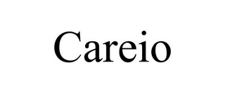 mark for CAREIO, trademark #85546420