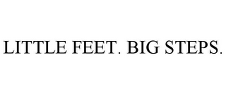 mark for LITTLE FEET. BIG STEPS., trademark #85566761