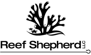 mark for REEF SHEPHERD LLC, trademark #85572487