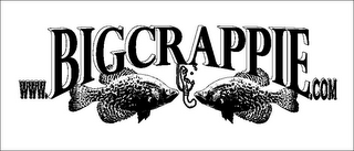 mark for WWW.BIGCRAPPIE.COM, trademark #85572961