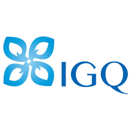 mark for IGQ, trademark #85578472