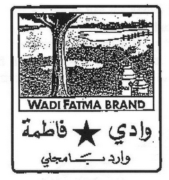 mark for WADI FATMA BRAND, trademark #85586895