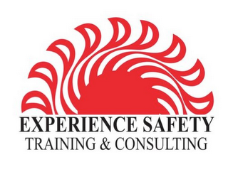 mark for EXPERIENCE SAFETY TRAINING & CONSULTING, trademark #85590423