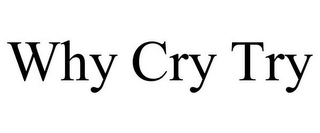 mark for WHY CRY TRY, trademark #85601898