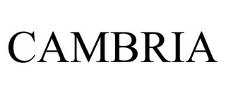 mark for CAMBRIA, trademark #85610910