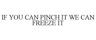 mark for IF YOU CAN PINCH IT WE CAN FREEZE IT, trademark #85621934