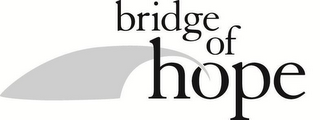 mark for BRIDGE OF HOPE, trademark #85622672
