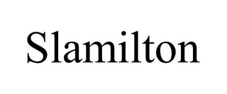 mark for SLAMILTON, trademark #85624281