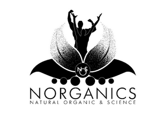 mark for NOS NORGANICS NATURAL ORGANIC & SCIENCE, trademark #85625356