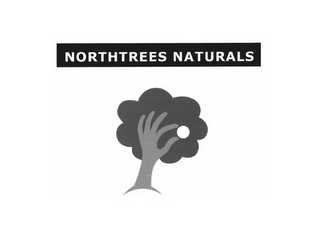 mark for NORTHTREES NATURALS, trademark #85634296