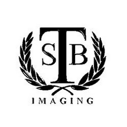 mark for SBT IMAGING, trademark #85637836