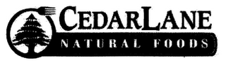 mark for CEDARLANE NATURAL FOODS, trademark #85642605