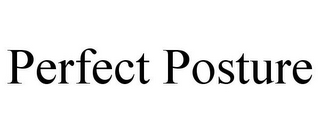 mark for PERFECT POSTURE, trademark #85646001