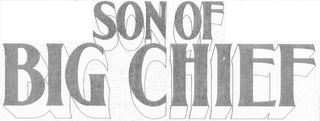 mark for SON OF BIG CHIEF, trademark #85666358