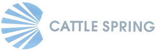 mark for CATTLE SPRING, trademark #85674694