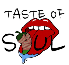 mark for TASTE OF SOUL, trademark #85677255