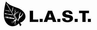 mark for L.A.S.T., trademark #85682583