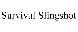 mark for SURVIVAL SLINGSHOT, trademark #85685210