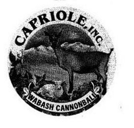 mark for CAPRIOLE INC. WABASH CANNONBALL, trademark #85690926