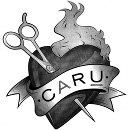 mark for C A R U, trademark #85697204