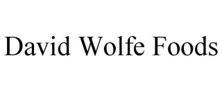 mark for DAVID WOLFE FOODS, trademark #85708296