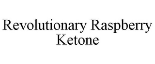 mark for REVOLUTIONARY RASPBERRY KETONE, trademark #85708316