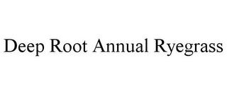 mark for DEEP ROOT ANNUAL RYEGRASS, trademark #85710092
