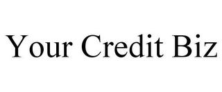 mark for YOUR CREDIT BIZ, trademark #85718797