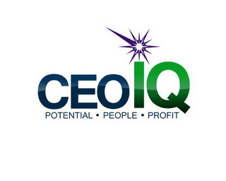 mark for CEOIQ POTENTIAL · PEOPLE · PROFIT, trademark #85721770