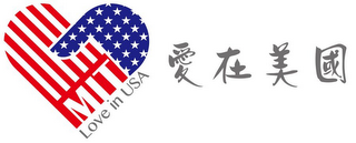 mark for MIT LOVE IN USA, trademark #85728691