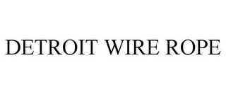 mark for DETROIT WIRE ROPE, trademark #85737342
