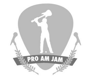 mark for PRO AM JAM, trademark #85739867