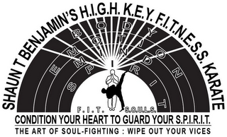 mark for SHAUN T BENJAMIN'S H.I.G.H. K.E.Y. F.I.T.N.E.S.S. KARATE BODY EMOTION MIND SPIRIT F.I.T. S.O.U.L.S. CONDITION YOUR HEART TO GUARD YOUR S.P.I.R.I.T. THE ART OF SOUL-FIGHTING : WIPE OUT YOUR VICES, trademark #85755747