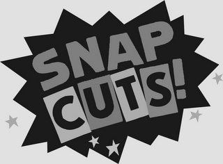 mark for SNAP CUTS!, trademark #85765385