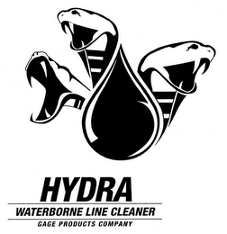 mark for HYDRA WATERBORNE LINE CLEANER GAGE PRODUCTS COMPANY, trademark #85773846