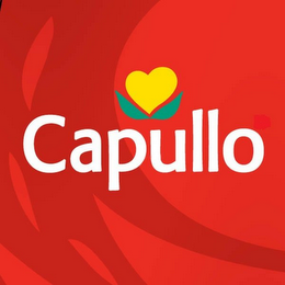 mark for CAPULLO, trademark #85784277