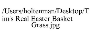 mark for /USERS/HOLTENMAN/DESKTOP/TIM'S REAL EASTER BASKET GRASS.JPG, trademark #85791442